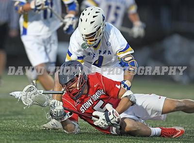 Hofstra vs Stony Brook Mens Lacrosse