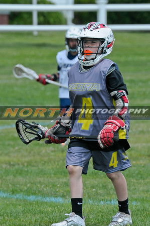 (4th Grade Boys) Zebra LAX vs. Viper LAX MW