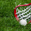A lacrosse ball and a girls head on grass