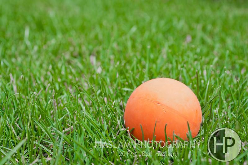 Single orange lacrosse ball on green grass