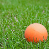 Single orange lacrosse ball on green grass