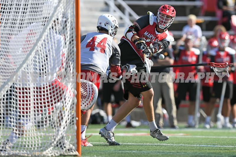 Men's Lacrosse Fall Ball 2017 Stony Brook, Harvard, and Maryland