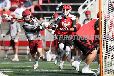 Maryland vs Harvard Men's DI Lacrosse Fallball at Stony Brook University October 21, 2017
