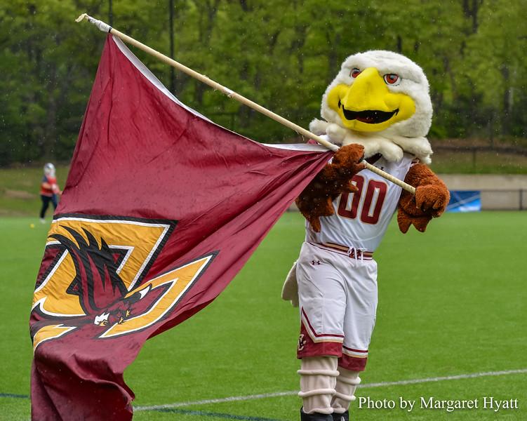 Boston College - Mascot Eagle