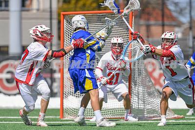 St John's vs Hofstra Lacrosse