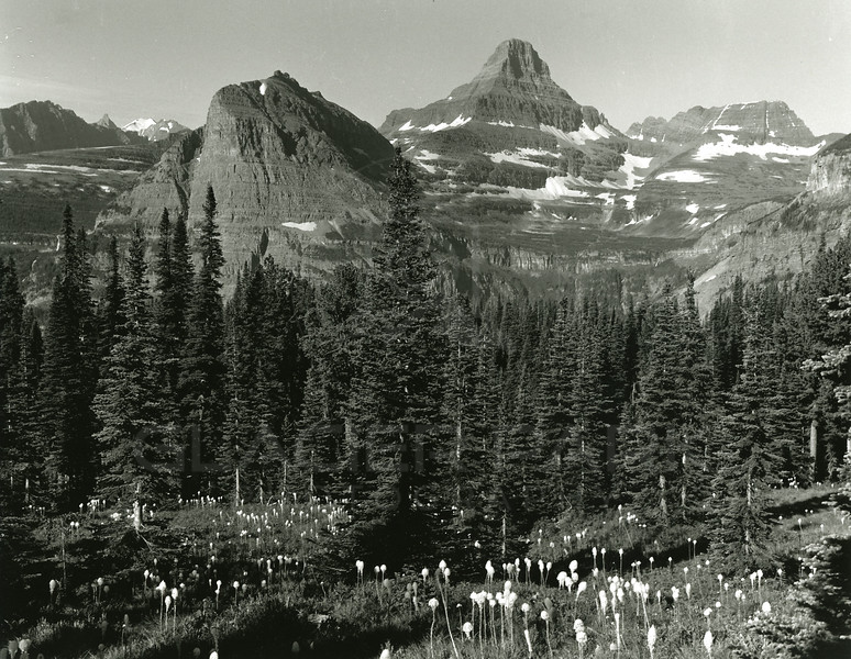 Mount Reynolds and Hanging Garden