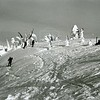 Skiers on Big Mountain