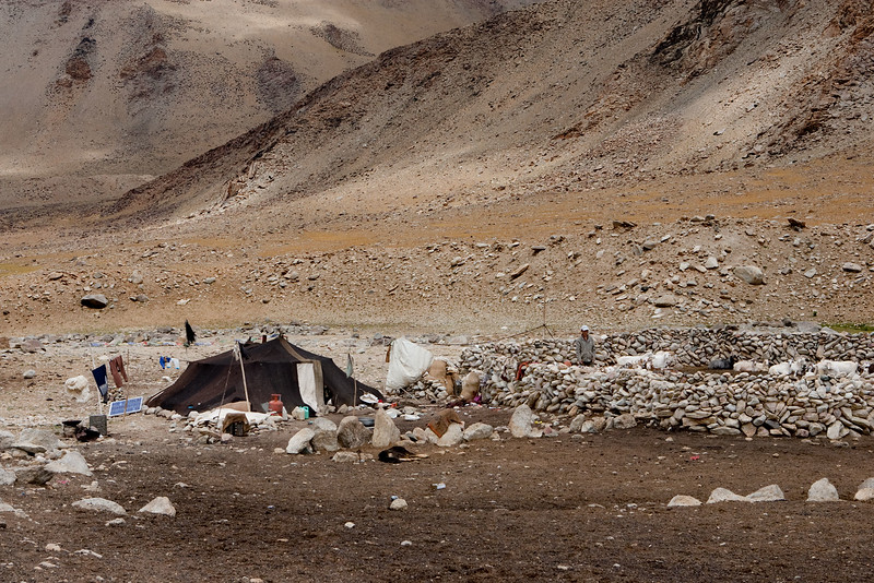 Nomad camp near Tso Kar.