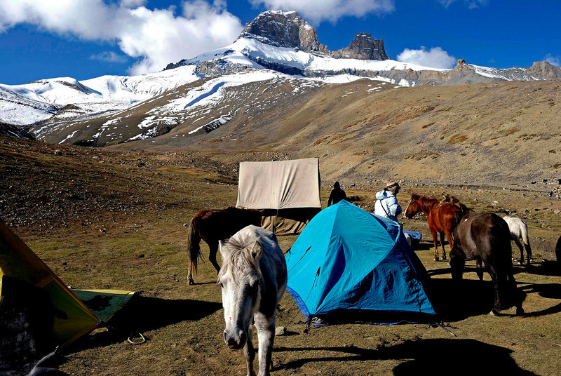 Our camp below the pass of Singhi la (5000 metres)