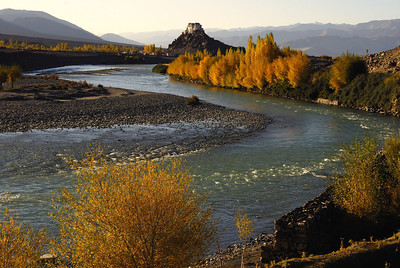 Autumn colours in the Indus valley, Ladakh with the monastery of Stakna on the hill top - October