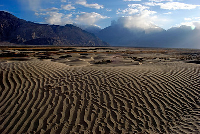 Sand dunes, Nubra Valley