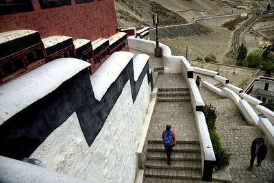 The steps upto Thikse monastery
