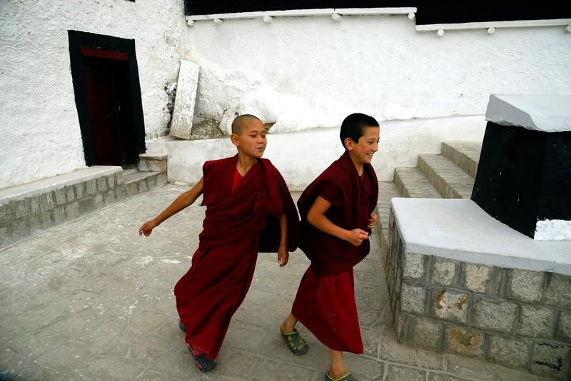 Young lamas at Thikse