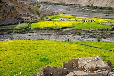 The village of Markha
