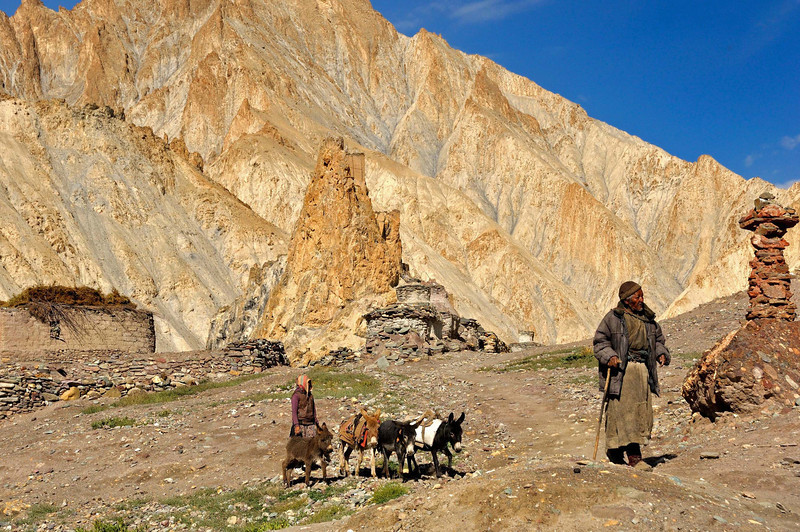 The old man and his donkeys bound for the grazing pastures above Hankar