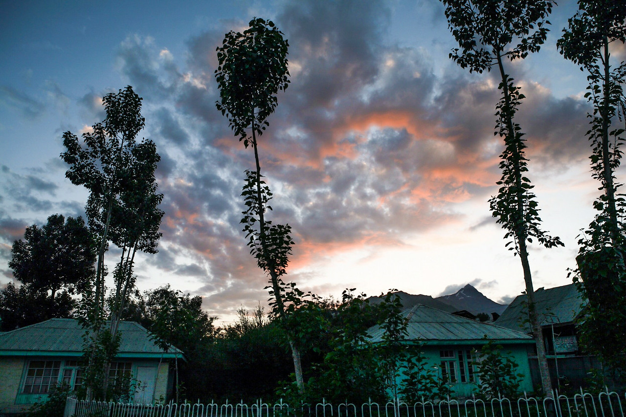 The sun sets in Dras among the pink sky and dark clouds against the silhouette of the poplar trees near the stay facility of the Jammu and Kashmir tourism department.