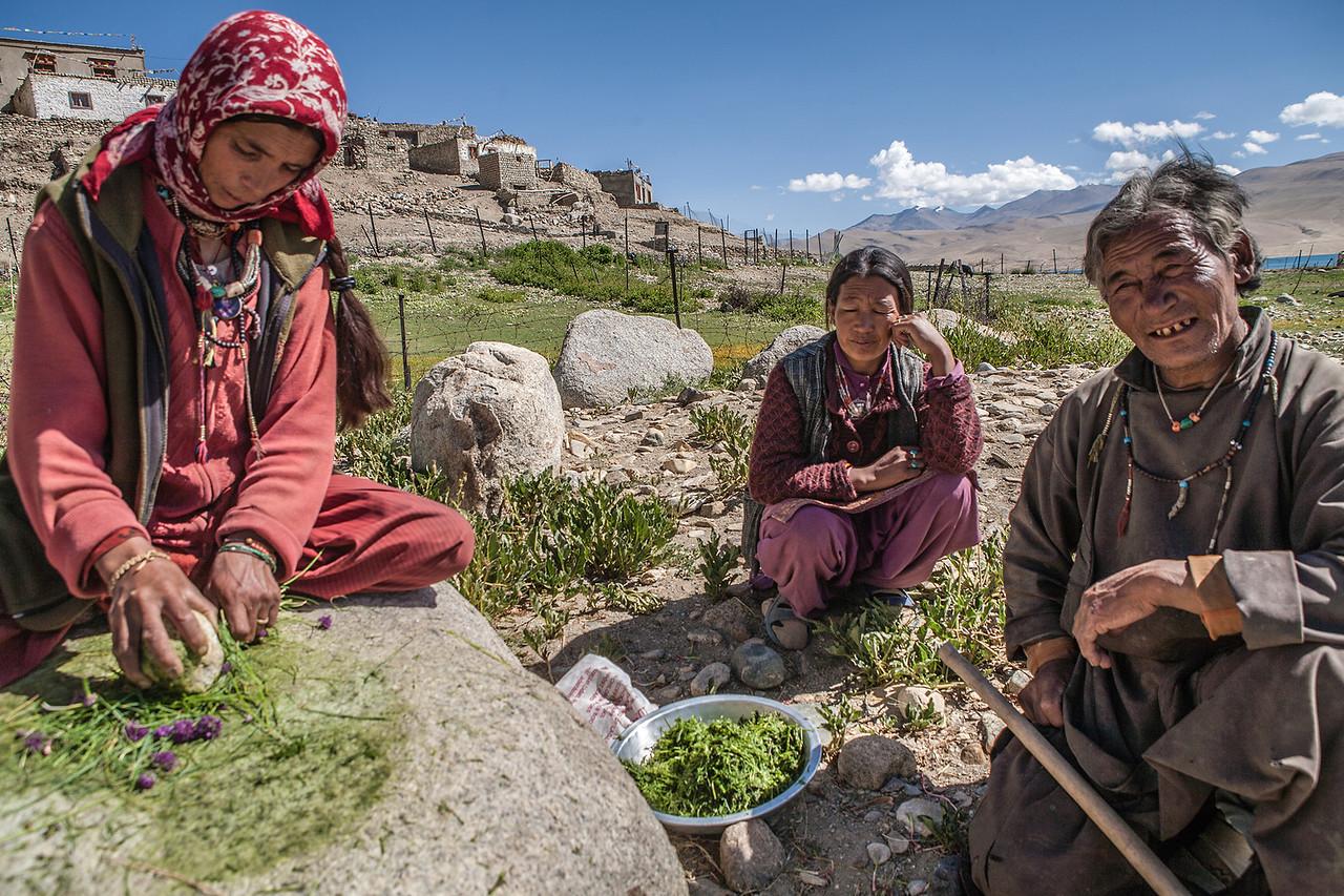 Women making spices at Tso Moriri, Ladakh, India