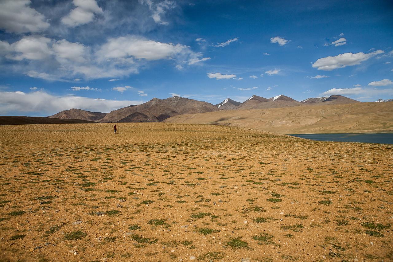 Flatland enroute Tso Moriri, Ladakh, India