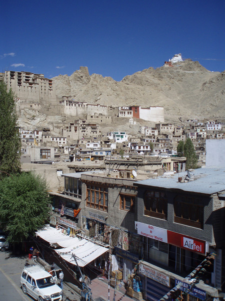 Leh, with the palace in the background