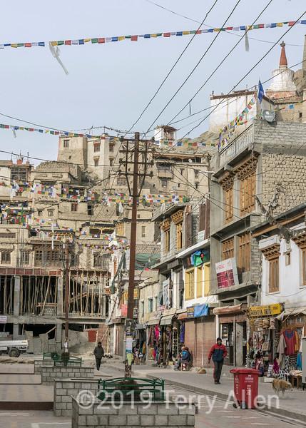 Bazaar Road and Leh Palace, vertical, Leh, Ladakh