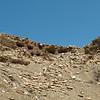 The Saspol Caves between Alchi and Likir