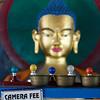 Inside Gadhan Thekchokling Gompa