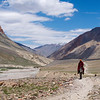 The ideal way to travel in Zanskar