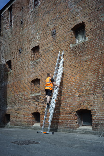 Professional Extension Ladders [1102-030]