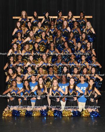 2013 Lady Panthers