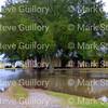 Rain Day, Acadiana Louisiana 120416 008