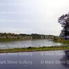 Rain Day, Acadiana Louisiana 120416 001