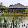Rain Day, Acadiana Louisiana 120416 006