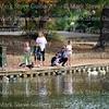 Girard Park, Lafayette, Louisiana 12032017 004