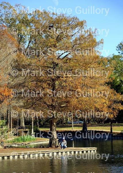 Girard Park, Lafayette, Louisiana 121915 057