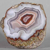 "#0320 Laguna Agate, Ejido Ojo Laguna, Chihuahua, Mexicio<br /> Just inside the initial agate layer comes a band of tiny holispheres, a dotted line around the agate which is unbroken. The soft white and violet bands eventually give way to a rich maroon center. A lovely and perfect agate.<br /> 3 x 2 3/4 x 1 1/4"" 0.45 lb<br /> All agates in the sample galleries have been SOLD."