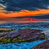 20170510_Laguna Beach_1133