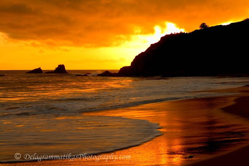20110326_Laguna Beach_0131