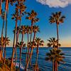20170306_Laguna Beach_0657