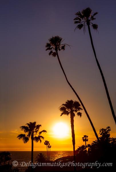 20170306_Laguna Beach_0654