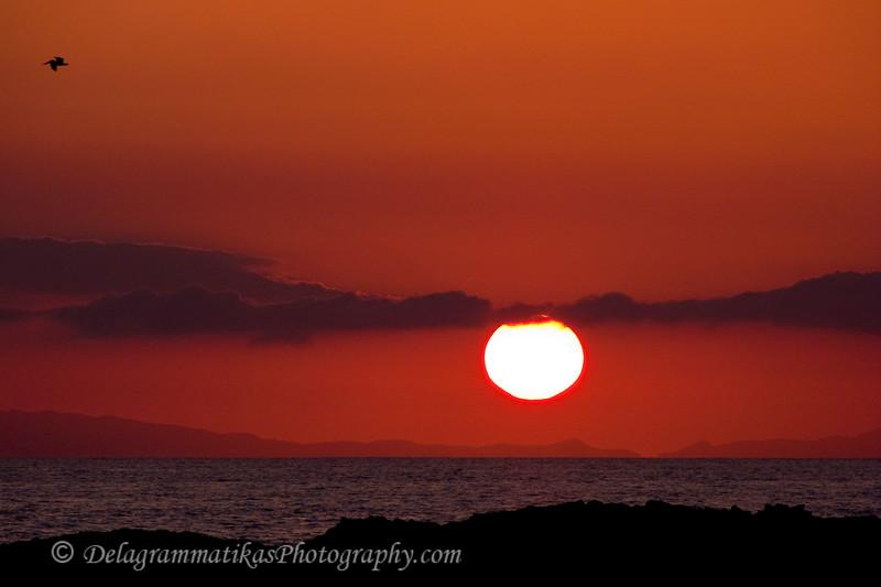 20090308_Laguna Beach_008