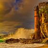 20110326_Laguna Beach-0103