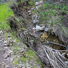 "Creek Bed stripped of growth after December 2010's ""!00 year"" flood"