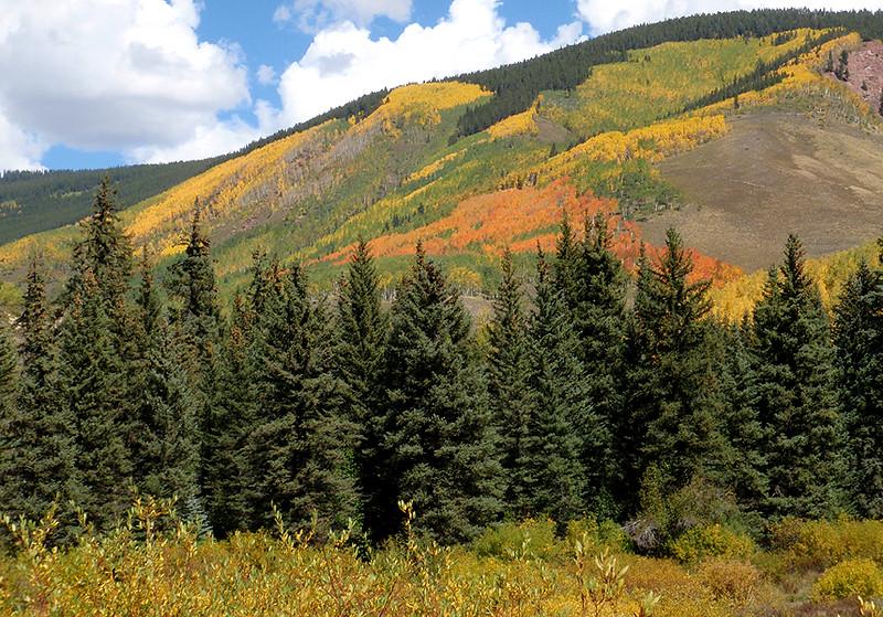 Teocalli Ridge rises above the Strand Bonus Trail, Crested Butte, Colorado.