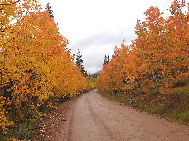 Georgia Pass area, South Park, Colorado