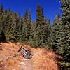 Colorado Trail, Segment 7 (Miners Creek Trail), Tenmile Range, Colorado
