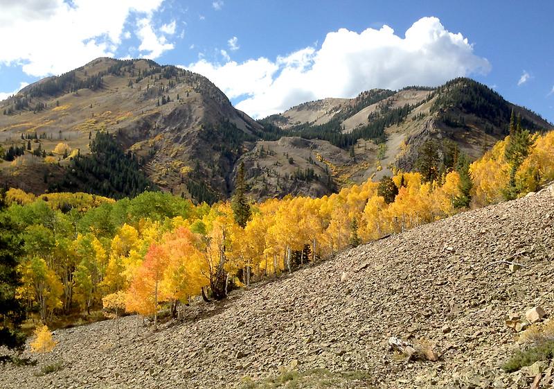 Anthracite Range, just below the Ohio Pass summit