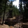 Roxborough Loop Trail