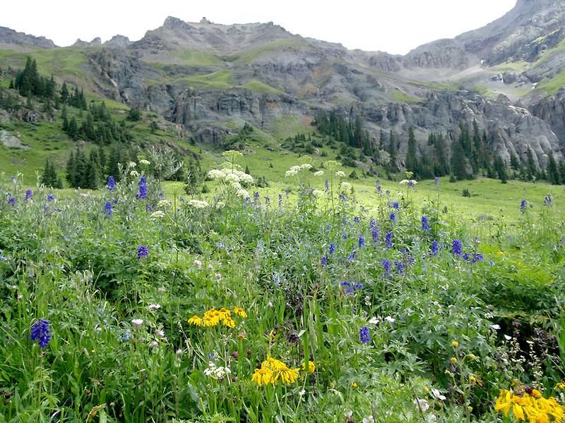The high saddle between Teakettle Mountain (13,819 ft, rank #98) and Potosi Peak (13,786 ft, rank #113), Yankee Boy Basin, San Juan Mountains, Colorado
