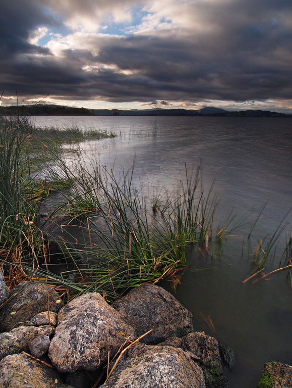 At The Water's Edge II