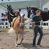 Kristi Garabrandt - The News-Herald<br /> Amanda Schultz of Perry walks her horse during the draft horse showmanship judging July 26 at the Lake County Fair.